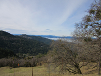 Stunning Panoramic Views - 50 Plus Acres w/cabin